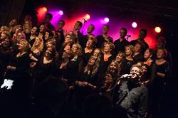 1311_SIGN_Concert2013_200.jpg